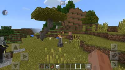 Minecraft Pocket Edition 1.2.3.6